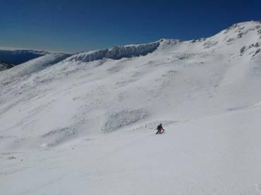 Lobo-esqui