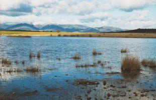 Ruta: Lagunas de Puebla de Beleña en plena Campiña