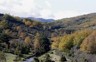 Rutas: Un recorrido por el Zarzas en Tejera Negra