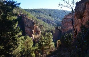 Rutas: El Barranco de la Hoz en el Señorío de Molina