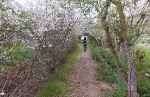 Ruta por el valle hermoso de las monjas