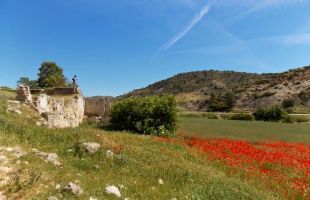 Rutas: El valle del Arlés y la ermita de las cuatro fuentes
