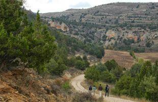 """Ruta: El Barranco del Regatillo y """"el Arroz de la Sole"""""""