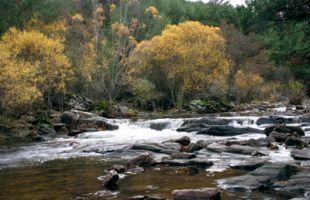 Rutas: Sonata de otoño en cuatro cuencas de Guadalajara